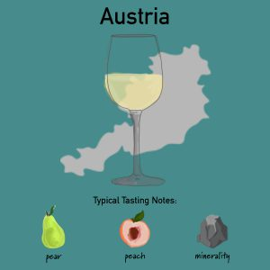 Tasting notes of Austrian Riesling